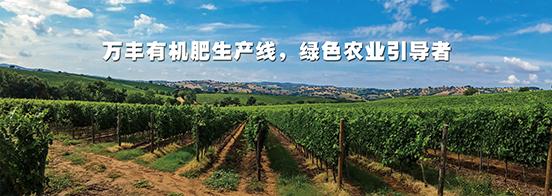 乐天堂fun88官方网站生产线子站baaner-3.png